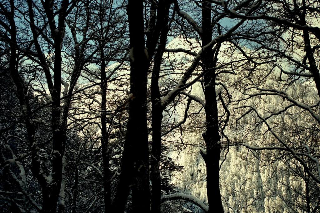 Pireneje, luty