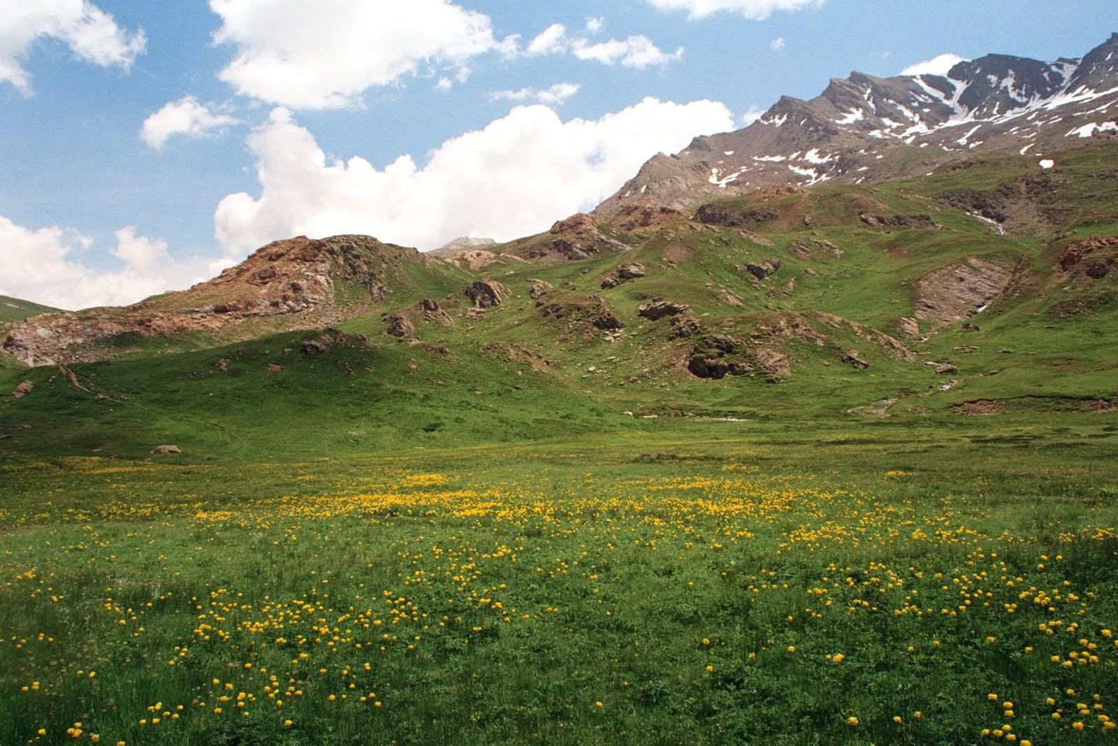 Dolina Ubaye