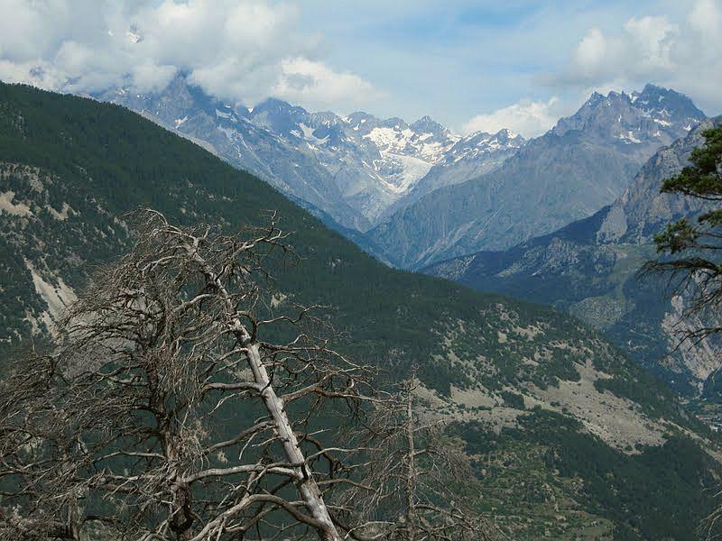 spalony las powyżej Argentiere la Besse, Jose Antonio de la Fuente
