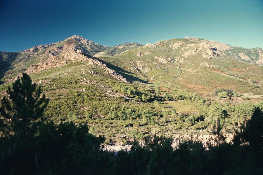 widok na wzgórza poniżej Bonifatu