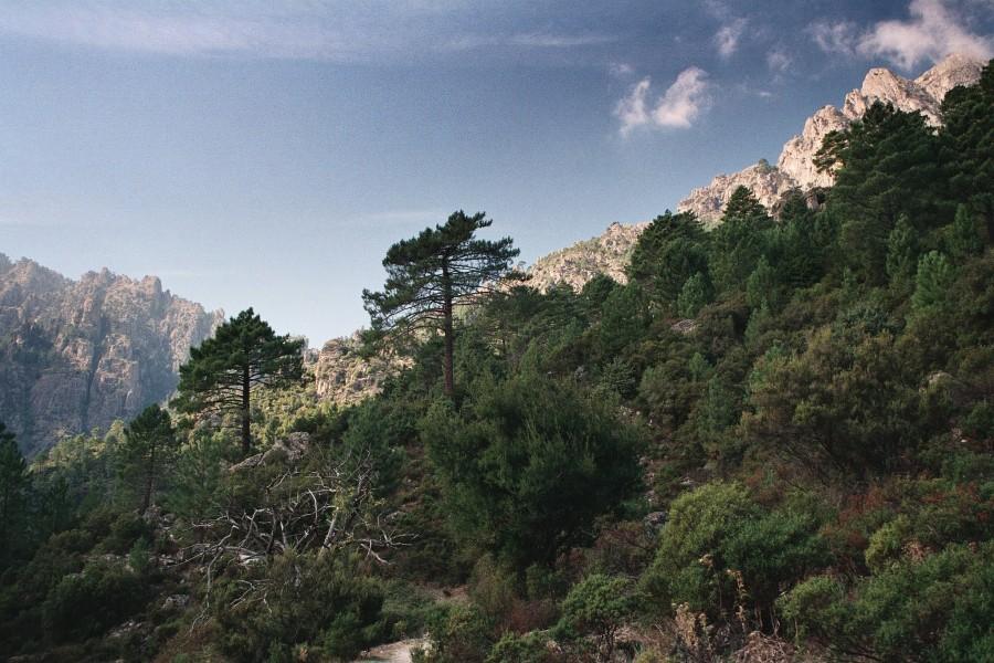 Gorges Tavignano