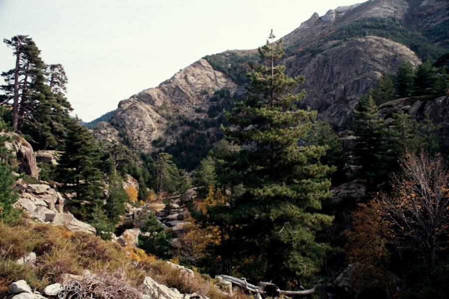 szlak w kierunku Lac Nino
