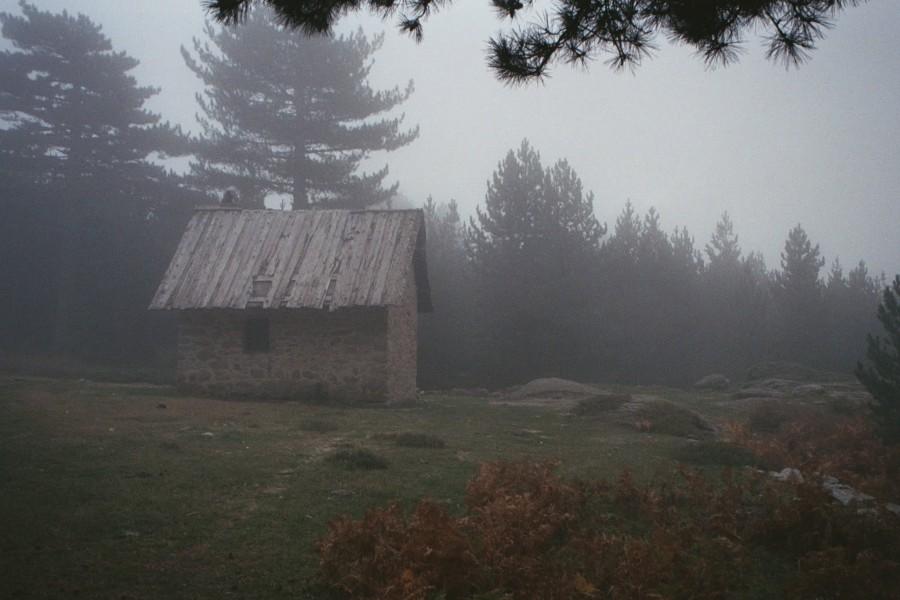 Platou Alzo
