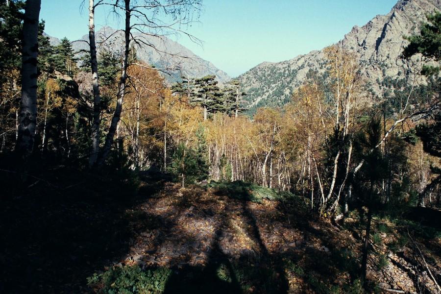 powyżej bergerie de Manica