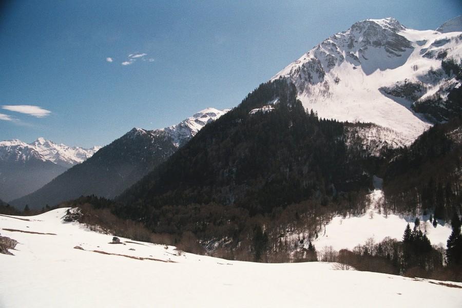 AA025 (2)
