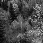 Pireneje, maj 13