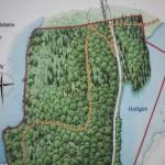 północny kraniec rezerwatu Brotorpet- dalej nie doszłam