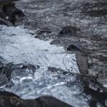 pokruszona kra na brzegu jeziora Immeln