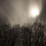 wichura w księżycową noc