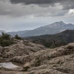 kamieniste pastwiska, Korsyka