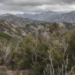 widok w stronę Marignana, Korsyka, Styczeń