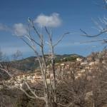 Evisa, Korsyka, styczeń