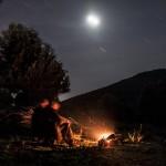ognisko w gaju oliwnym, Serriera, Korsyka, styczeń