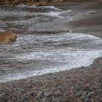 kamienista plaża Korsyka styczeń