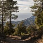 widok w stronę Serriera, Korsyka, styczeń