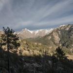 Ośnieżone góry i spalony las, Korsyka, styczeń