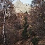 zejście do Quenca, Pireneje, listopad