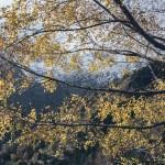podejście do Pleta del Prat
