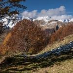 Col de la Serre, w tle Mont Valier