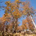 zejście do St Lizier, Pireneje listopad