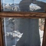 Refuge Certascan- podobno najwyżej położona kuchnia w Pirenejach