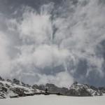 wichura, Pireneje, kwiecień