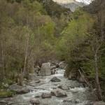 rzeka Freser, widok w górę doliny w stronę Nurii