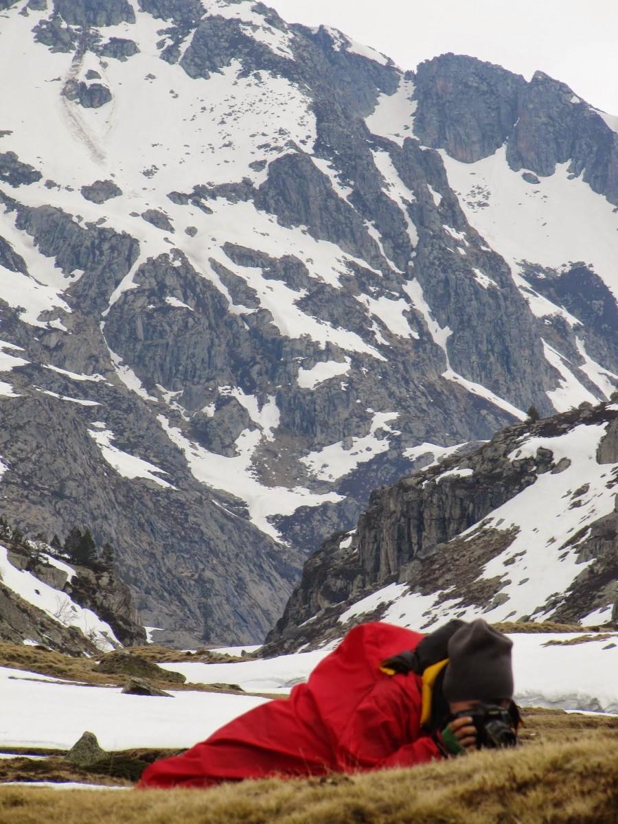 Pireneje kwiecień, fot Jose Antonio de la Fuente