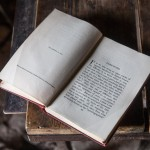 pireneje kwiecień, maj 2015 - zabytkowe książki