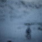pireneje kwiecień, maj 2015 -deszczowy poranek