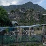 Andorra la Vella, ogródki