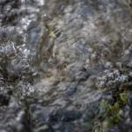 strumień wypływający z Estany Angonella