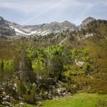 widok w górę Val Ferrera