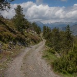 Droga do doliny Cardos