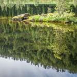 """poranek nad """"naszym"""" jeziorkiem"""