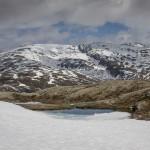 Sogneflejjet, Norwegia