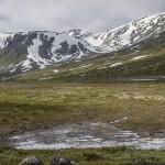 widok na lodowce