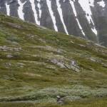 piękna pasiasta góra na wprost zejścia