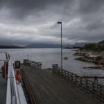 porcik w drodze do Bergen