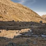 Refugio Anglos