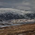 w drodze do Kafjord