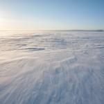 Finnmarksvidda wędrujący śnieg