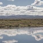 Kjolur, Islandia fot Kasia Nizinkiewicz (35)