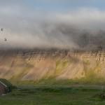 reykarfjordur