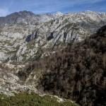 hala z widokiem na Picos