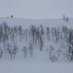 Nordkinn, winter