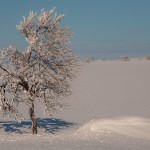 Finlandia, narty, zima