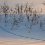 Finlandia, Laponia, narty