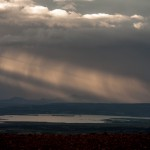 Myvatn-Bard