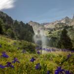 Pireneje, lipiec, Masyw Posets